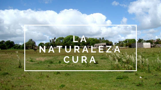 NATURALEZACUR.A